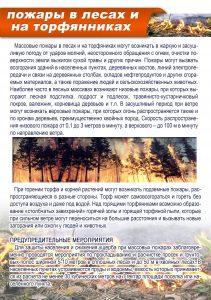 пожары в лесах